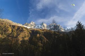 80-Les aiguilles de Chamonix