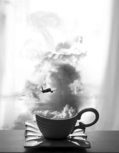 860 Béatrice Dumont - Vol dans un nuage de lait