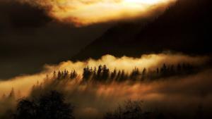 080 Matthias Duvivier - Montagne dorée