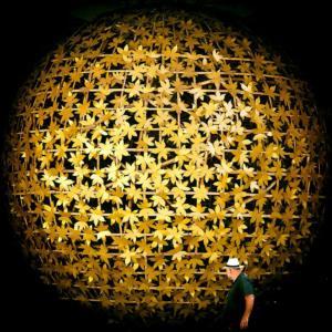 321 Matthias Duvivier - Boule dorée