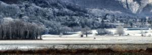 106 Christophe Penicaud - Premières neiges
