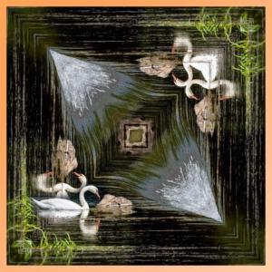 082 Jean-Marc Szultz - La multiplication du Cygne