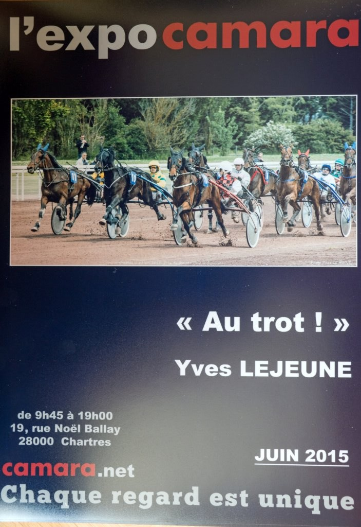 Yves Lejeune expose chez Camara