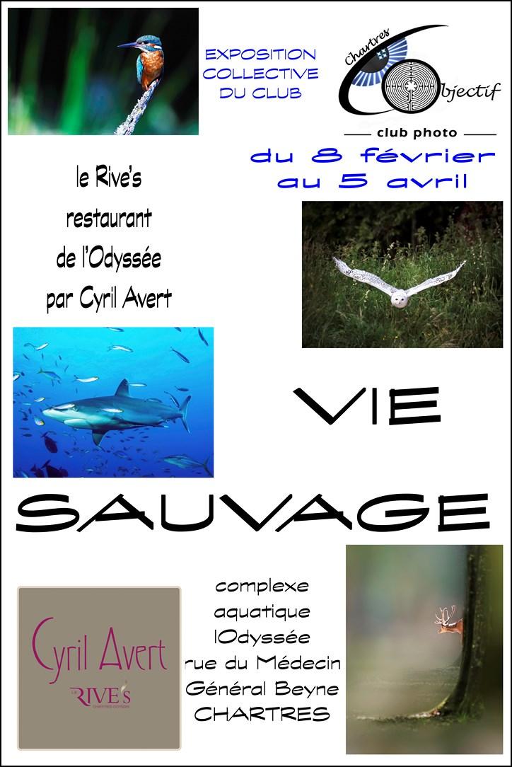 Exposition «Vie Sauvage» au Rive's