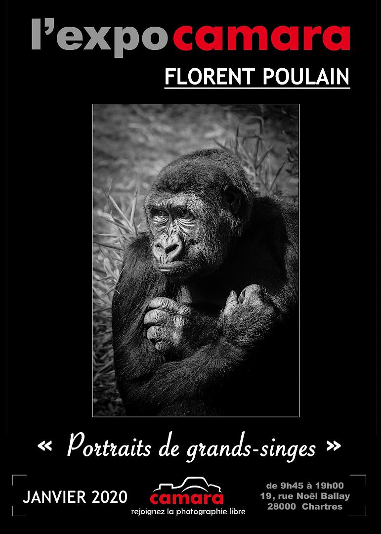 Florent POULAIN expose chez Camara
