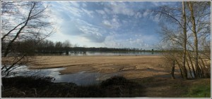 Loire St Denis en Val