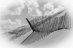 05ème  Dune  - Florent Poulain