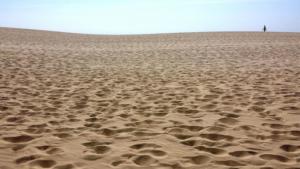 335 Aurore Hecquet Seul dans le désert