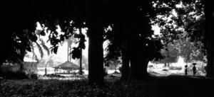 70 Christophe Penicaud - Une clairière