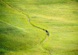 Séverine Amy - perdus dans la montagne